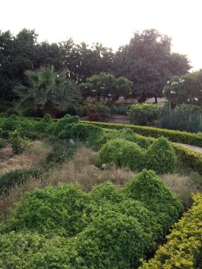 More green space in Khartoum