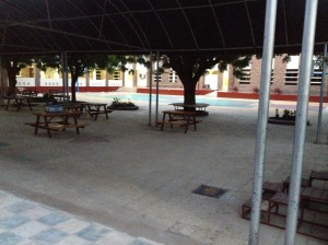 Courtyard under the canopy
